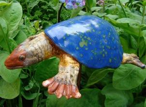 turtle blue