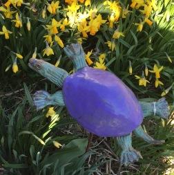 turtle purple