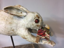 wild hare detail