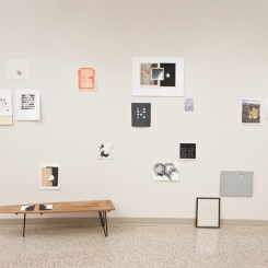 Preliminary Findings_collage wall